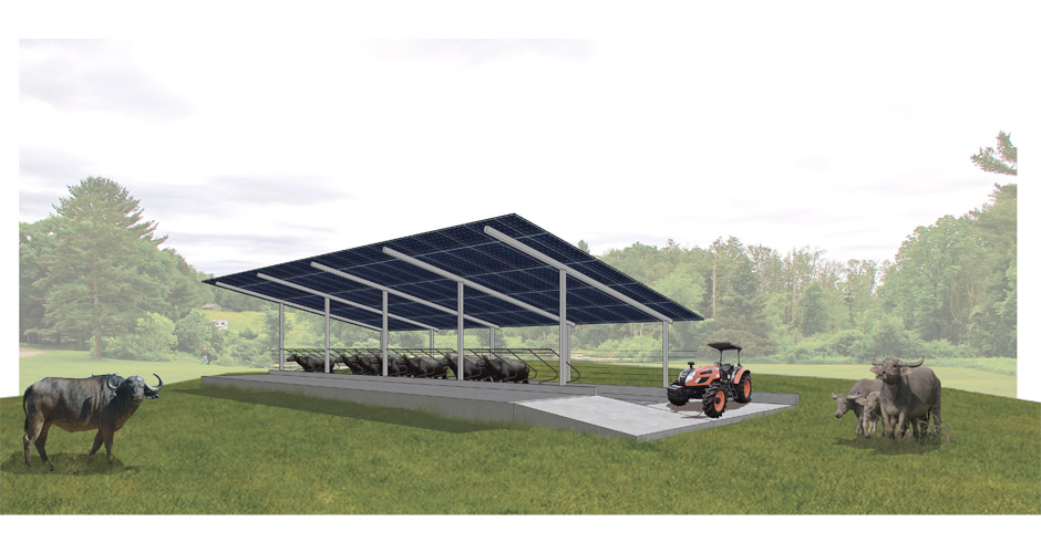 75_ecofarm-cattle-shed